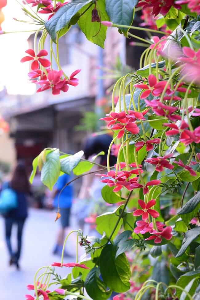 台南旅行お役立ちアプリ